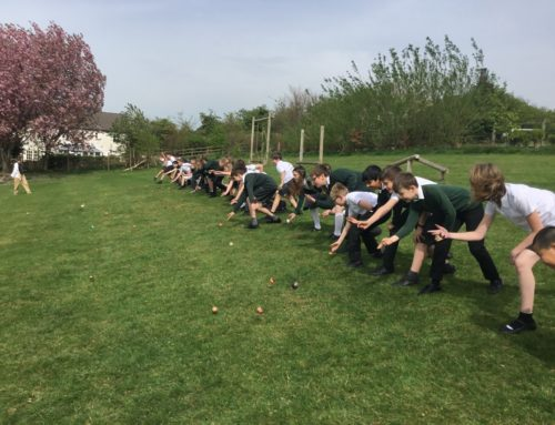 Egg Rolling Extravaganza!