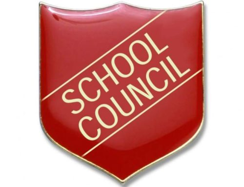 School Council and Eco Council