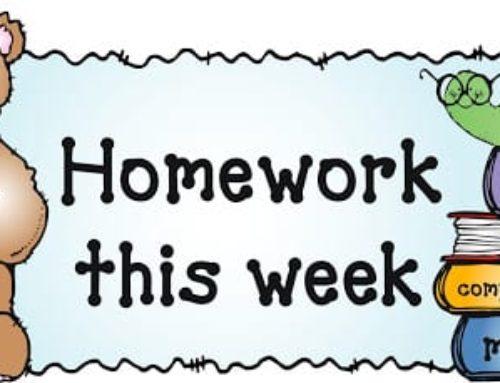Beech Class Half Term Homework