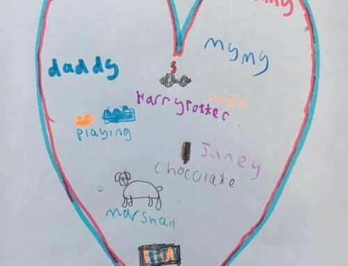 Holly Class Home Learning Week 3