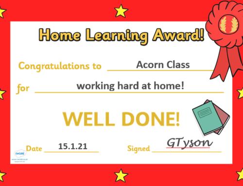 Acorn Update