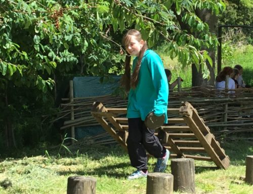 Forest School: Sycamore Class (8/6/21)