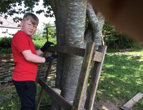Forest School: Sycamore Class 2 week special!  (22/6/21 – 29/6/21)